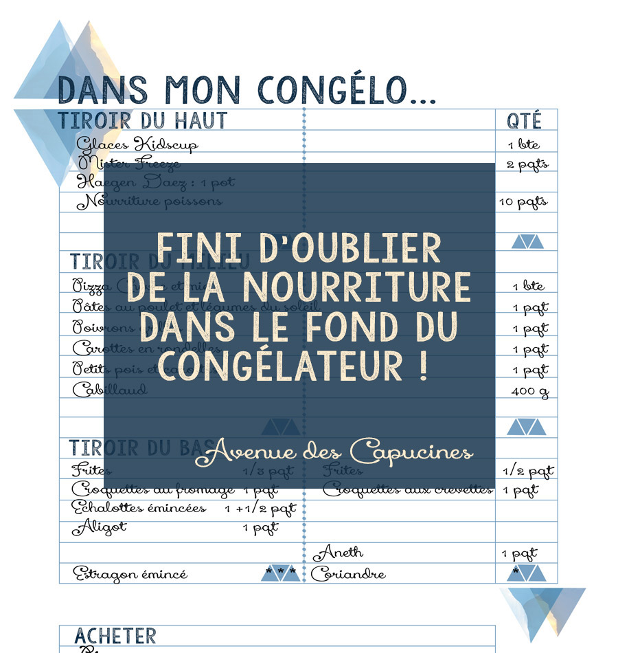 Astuce anti gaspi listez le contenu de votre cong lateur avenue des cap - Comment degivrer un congelateur sans le debrancher ...